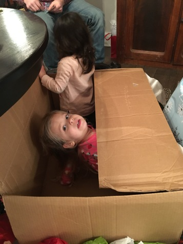 2017 Christmas girls in a box 2