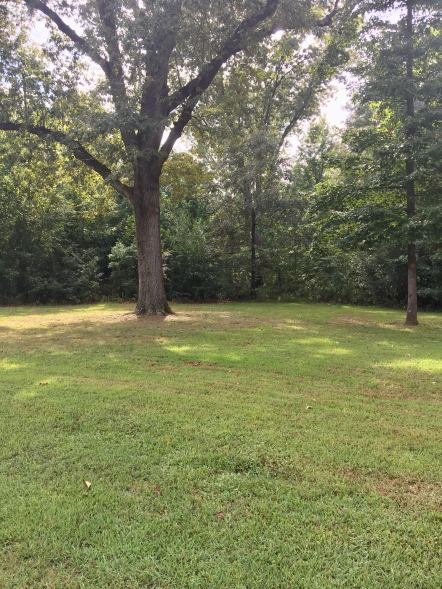 0 Periwinkle lot for sale